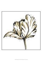 Small Tulip Sketch III Fine-Art Print