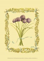 Small Chives Fine-Art Print
