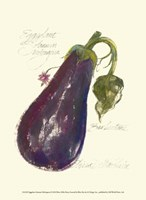 Eggplant Solanum Melongena Fine-Art Print