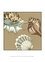 Small Shell Trio on Khaki III (P) Fine-Art Print