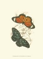 Butterflies II Fine-Art Print