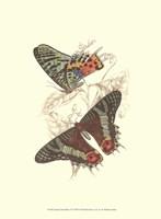 Butterflies IV Fine-Art Print