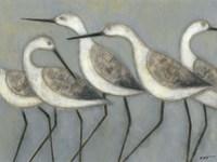 Shore Birds I Fine-Art Print