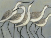 Shore Birds II Fine-Art Print