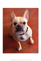 Sophie French Bulldog Fine-Art Print