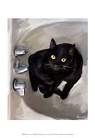 Black Cat Lookin' Fine-Art Print