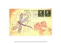 Postcard Dragonfly I Fine-Art Print