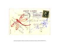Postcard Dragonfly IV Fine-Art Print