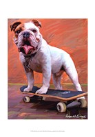 Bull Dog Nose Grind Fine-Art Print