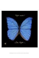 Striking Butterfly I Fine-Art Print