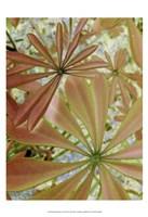 Woodland Plants in Red III Fine-Art Print
