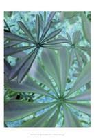 Woodland Plants in Blue III Fine-Art Print