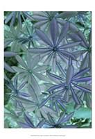 Woodland Plants in Blue IV Fine-Art Print