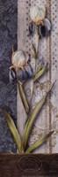 Magasin Floral Fine-Art Print