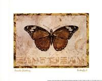 Butterfly V Fine-Art Print