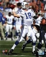 Peyton Manning 2010 throwing the ball Fine-Art Print