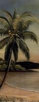 Palm at Seaside Fine-Art Print