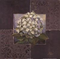 Hydrangeas on Brown II Fine-Art Print