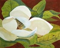Magnolia I Fine-Art Print