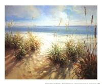 Across the Dunes Fine-Art Print
