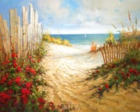 Seaside Pathway Fine-Art Print