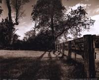 Fence I Fine-Art Print