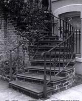 Savannah Stairs III Fine-Art Print