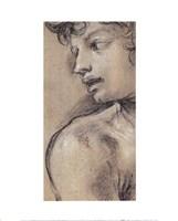 Head of a Young Man Fine-Art Print