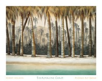 Tourmaline Coast Fine-Art Print