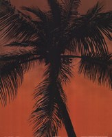 Palm on Orange Fine-Art Print