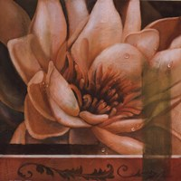 Flor de Loto II Fine-Art Print