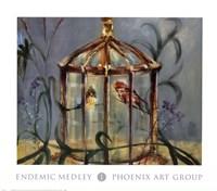 Endemic Medley I Fine-Art Print