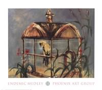 Endemic Medley II Fine-Art Print