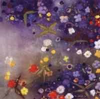 Gardnes in the Mist X Fine-Art Print