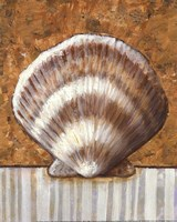Vintage Shell III - mini Fine-Art Print