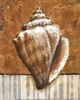 Vintage Shell II - mini Framed Print