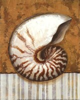 Vintage Shell I - mini Fine-Art Print