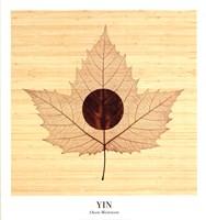 Yin/Bamboo Fine-Art Print