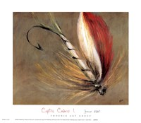Captive Colors I Fine-Art Print