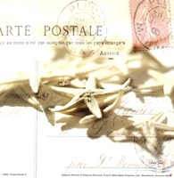 Postal Shells II Fine-Art Print