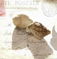 Postal Shells I Fine-Art Print