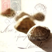 Postal Shells IV Fine-Art Print