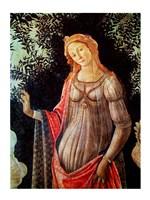 Primavera, detail of Venus, c.1478 Fine-Art Print