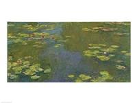 The Lily Pond Fine-Art Print