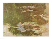 Water Lilies, Reflected Willow, c.1920 Fine-Art Print