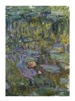 Waterlilies (dark green) Fine-Art Print
