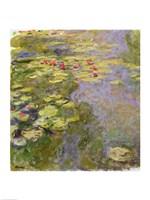 The Waterlily Pond, 1917-19 Fine-Art Print