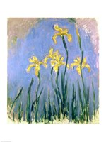 The Yellow Irises, c.1918-25 Fine-Art Print