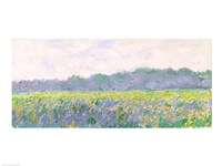 Field of Yellow Irises at Giverny, 1887 Fine-Art Print