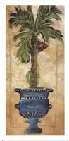 Potted Palm III Fine-Art Print